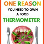 Food Safety Superhero Fighting Food-borne illness and food poisoning prevention - Why do I need to use a meat thermometer