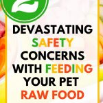 Food Safety Superhero Fighting Food-borne illness and food poisoning prevention - SAFETY CONCERNS FEEDING PETS RAW FOOD