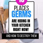 How to clean a kitchen step by step to destroy germs and bacteria