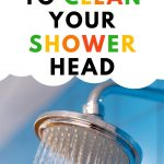 Food Safety Superhero Fighting Food-borne illness and food poisoning prevention - The non toxic way to clean your shower head