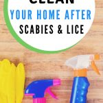 How to clean your house after scabies and lice