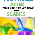 How to clean your house once and for all after scabies and lice