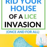 The best way to clean your house after scabies and lice