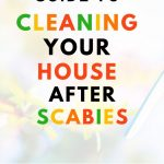 FOOD SAFETY SUPERHERO FIGHTING FOOD-BORNE ILLNESS AND FOOD POISONING PREVENTION THE ULTIMATE GUIDE TO CLEANING YOUR HOUSE AFTER SCABIES