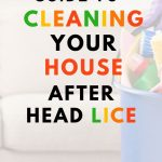 FOOD SAFETY SUPERHERO FIGHTING FOOD-BORNE ILLNESS AND FOOD POISONING PREVENTION THE ULTIMATE GUIDE TO CLEANING YOUR HOUSE AFTER LICE