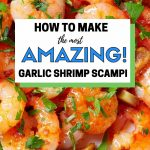 The Most Amazing Garlic Shrimp Scampi