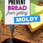 how to prevent bread from molding