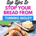 The best way to prevent moldy bread
