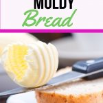 How to prevent your bread from getting moldy