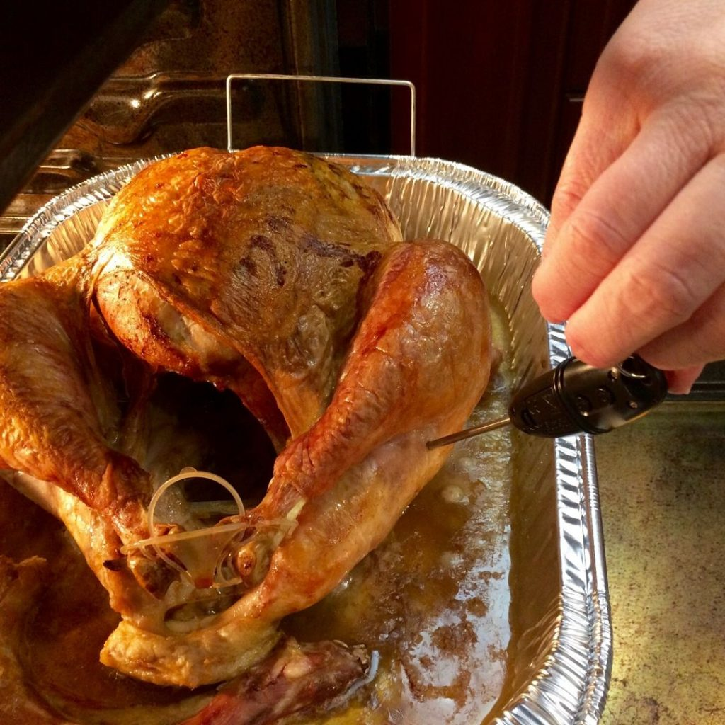 how to take the temperature of a turkey