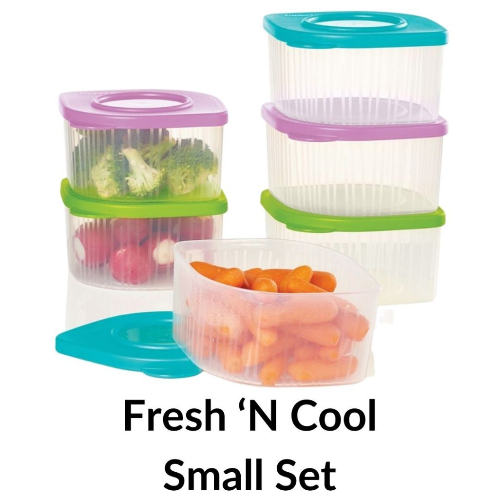 tupperware fresh n cool small set